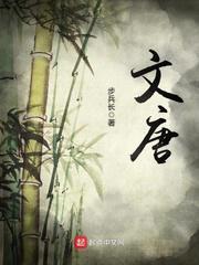 《文唐》全本小说下载