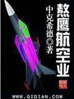 《熬鹰航空业》全本小说下载