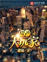 《房产大玩家》全本小说下载