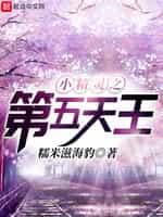 《小精灵之第五天王》全本TXT下载-作者:糯米滋海豹